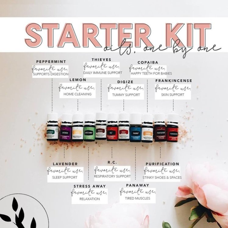 starter kit graphic